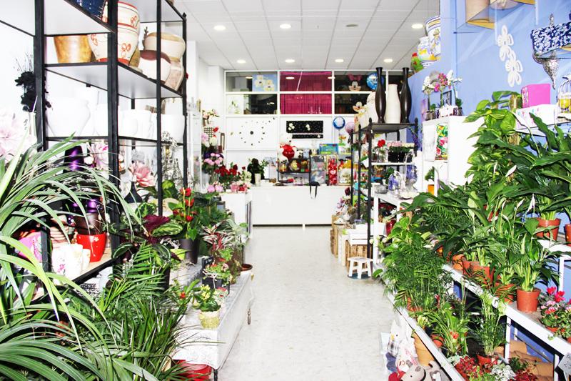 Plantas Floristeria Mercado